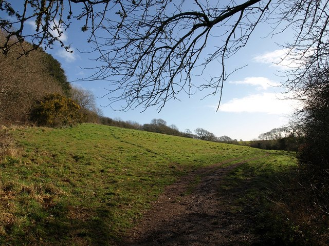 Field above Marsh Combe