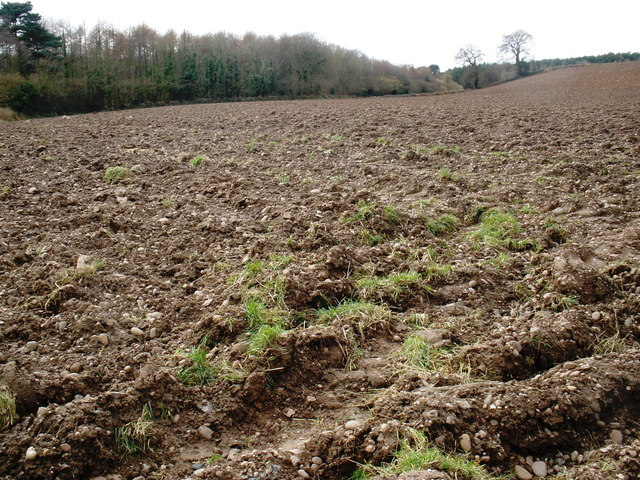 Ploughed field, at Stowford Farm