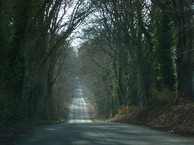 The road from Wilton to Bishopstone