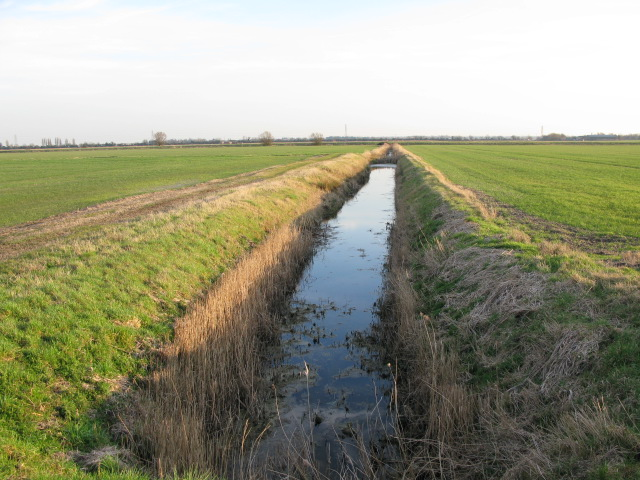 Ditch draining into Sarre Penn on Chislet Marshes