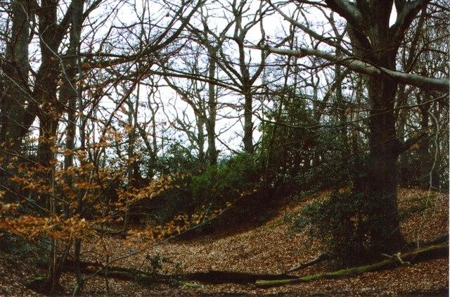 Grimsbury Castle – Iron-Age Hillfort