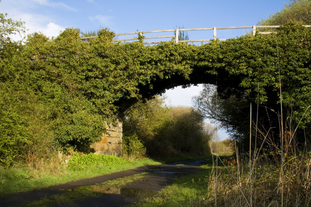 Old Alnwick to Alnmouth Railway Route