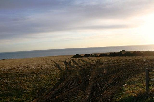 Fields of Uras