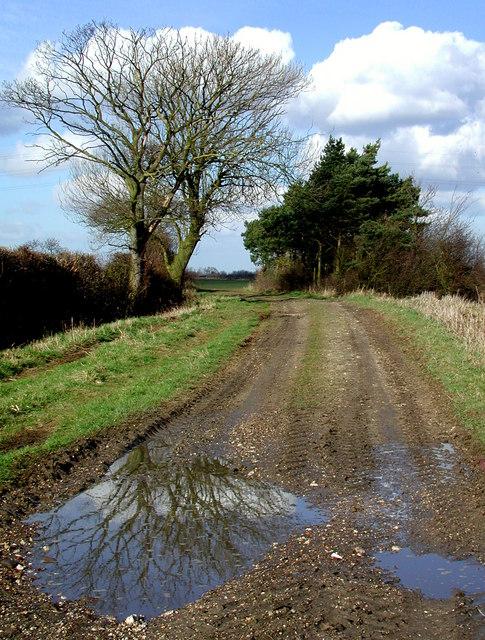 Common Lane, Wawne