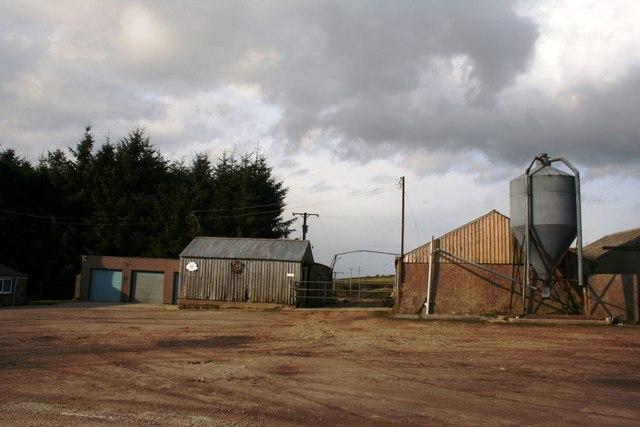 Berrytop Farm
