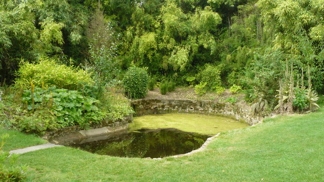 Pond at Standen House
