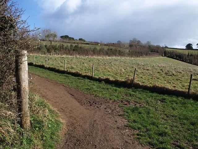 Field, Churchtown Farm Community Nature Reserve