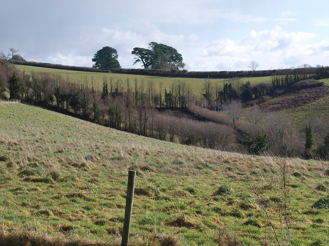 Valley above Marsh Combe
