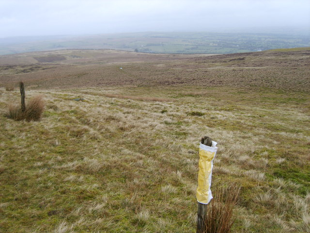 On Harrop Fell
