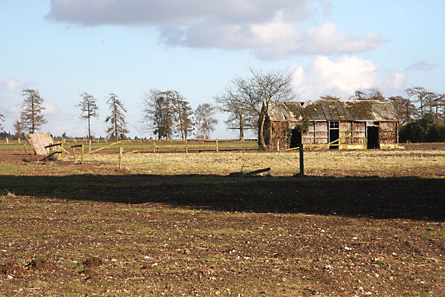 Ruined hut near Moorlands Stud