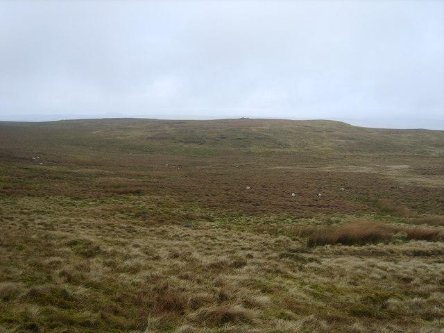 Sadler Hill