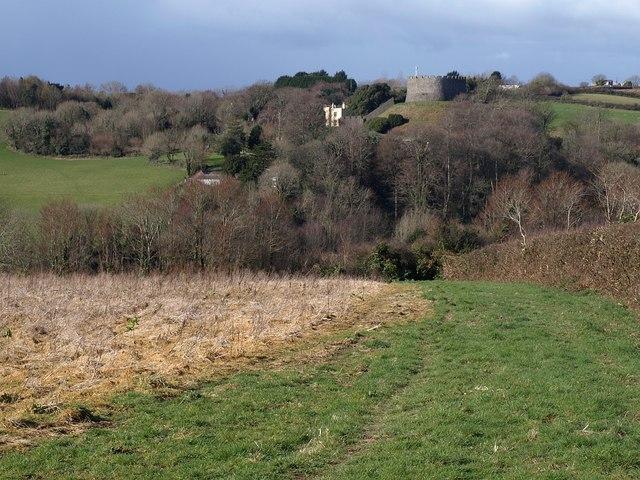Arable field, Churchtown Farm Community Nature Reserve