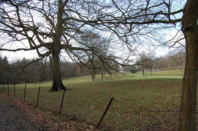 Land near Netherfield place