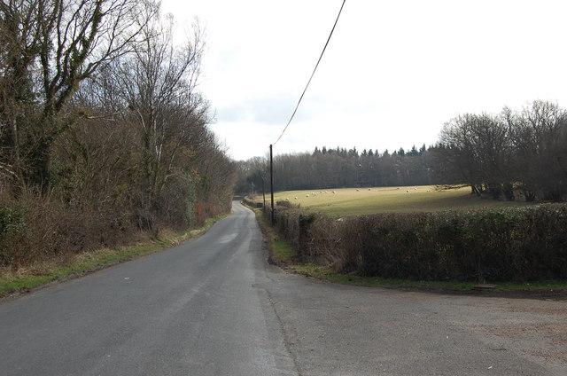 Netherfield road