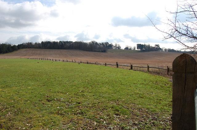 Fields near John's Cross