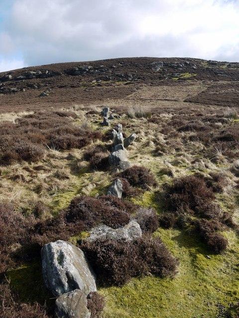 Ancient field boundary west of Garleigh Hill