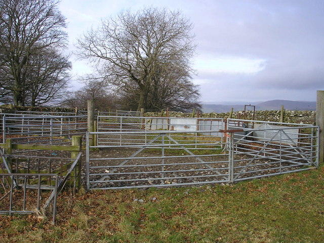 Sheepfold at spot height, 301m