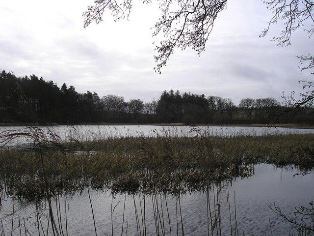 Whitmuirhall Loch