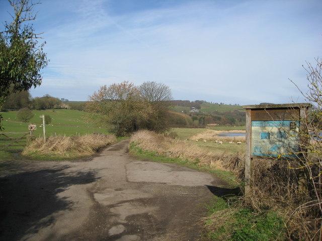 Wyver Lane