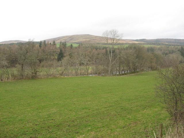 Grazing land at the riverside