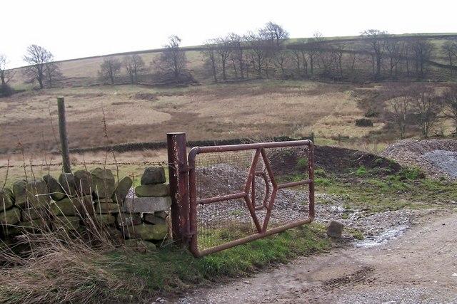 Left 'D' Gate on Wet Shaw Lane, near Ughill