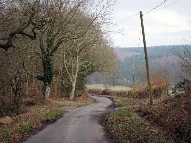 Penhurst Lane
