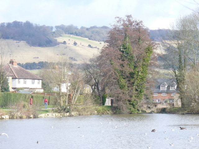 Mill Pond, Dorking