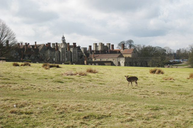 Deer next to Knole House