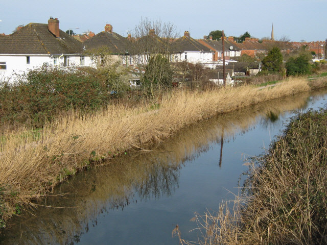 Bridgwater and Taunton Canal from Hamp Bridge