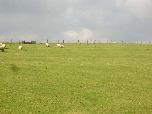 Pasture west of Painley Farm