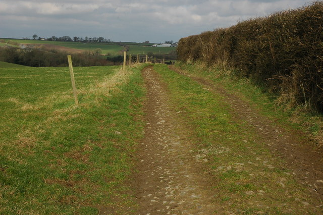 Farm track at Lower Filleigh