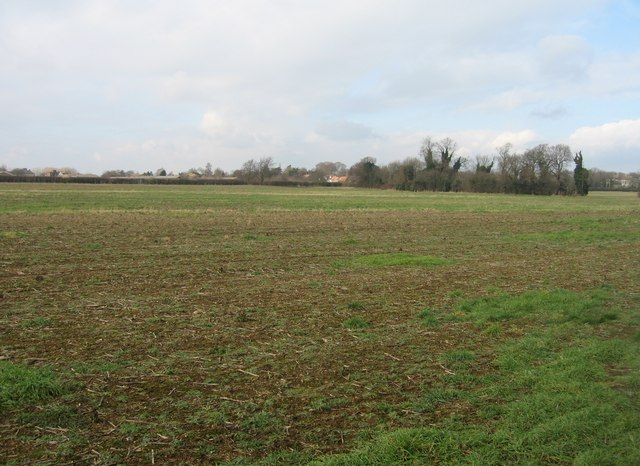 Stubble in the fields - Clay Farm