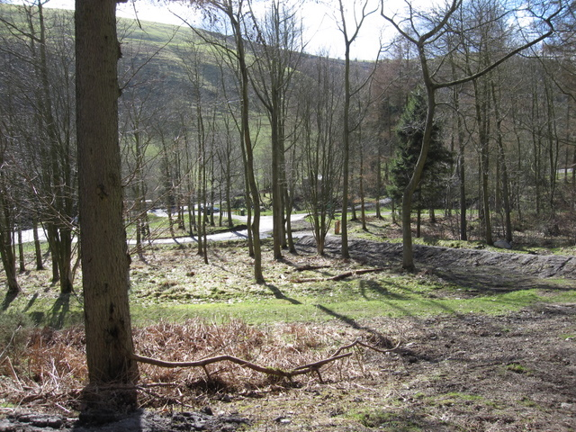 Woodland and car park below Moel Famau