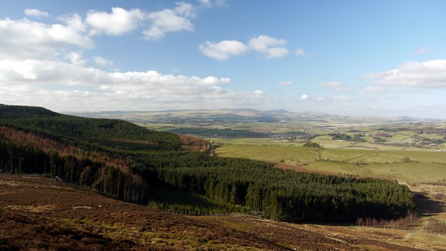 Simonside Forest from north side of The Beacon
