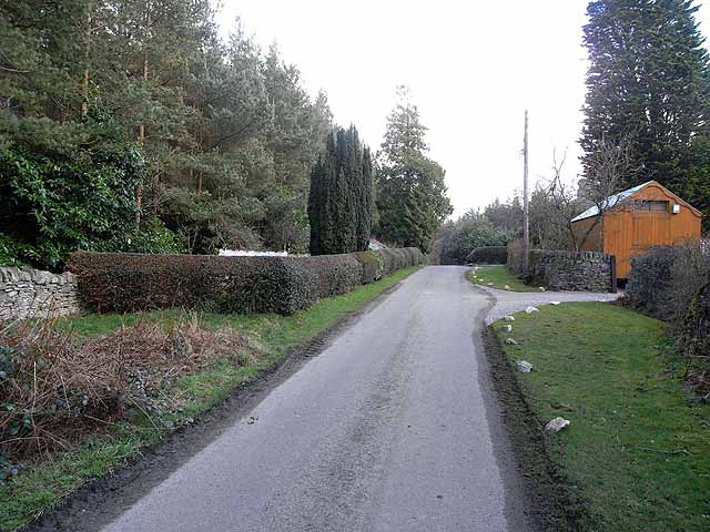 Forester's Cottage garden