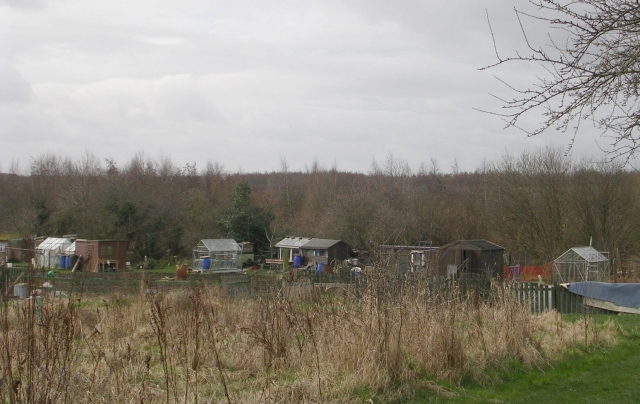Allotments - Featherstone Lane