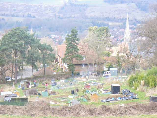 Allotments  by Tower Hill