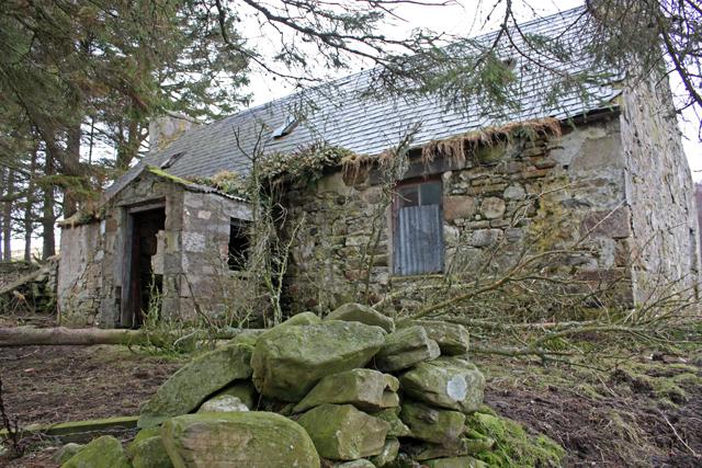 Derelict house, Millburn, Glen Lochy