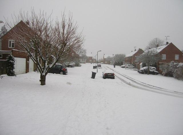 Scotney Road