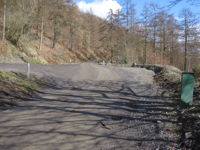 Track junction in Coed Moel Famau