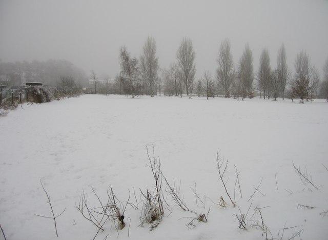 Snowscene in Oakridge