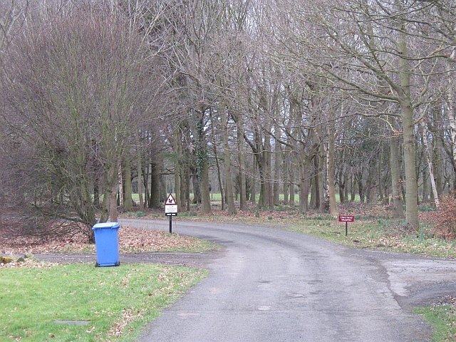 Estate road, Blagdon Hall