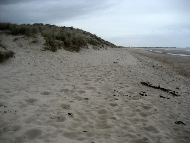 Sand Dunes of Druridge Links