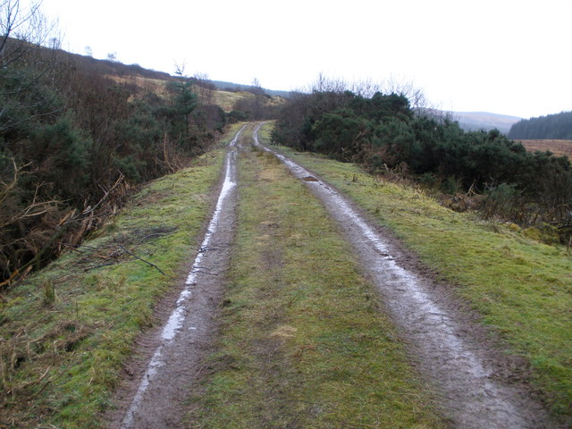 On track from Strone Farm