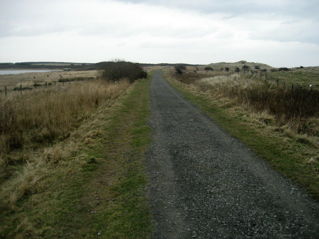 Trail in East Chevington Nature Reserve