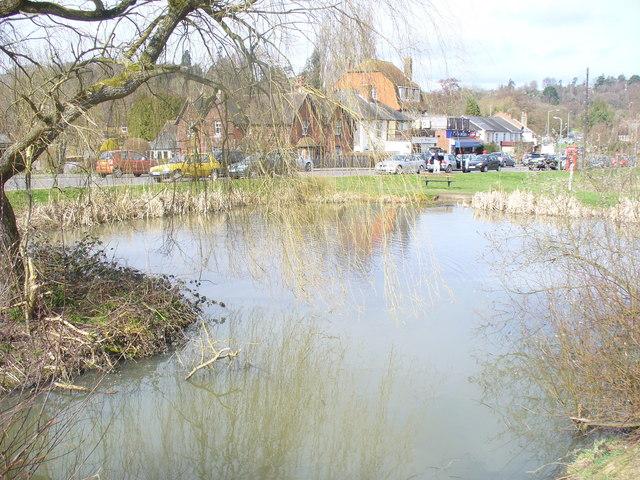 North Holmwood Village Pond