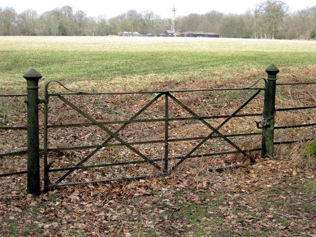 Old Iron Gate onto Meadow at Ashridge