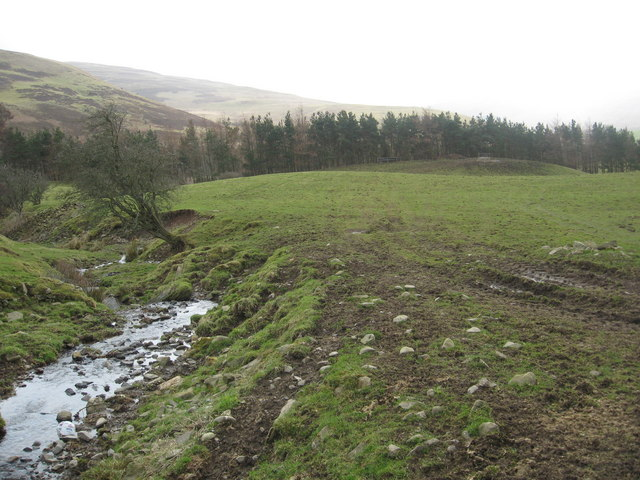 Rugged grazing land, a burn, evergreens beside the river and hills