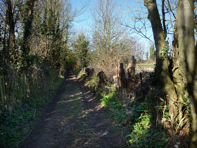 Path just south of the Church