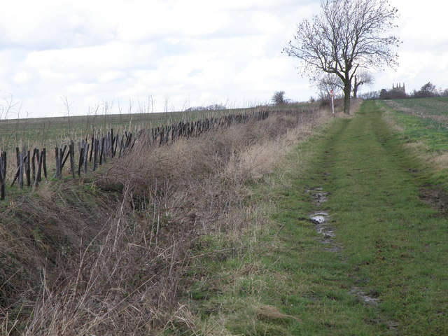Byway towards Leighton Bromswold